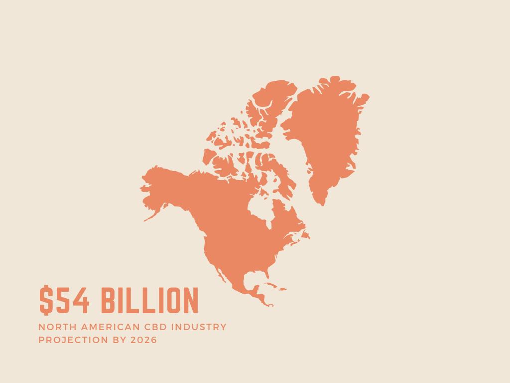CBD industry projection 2026