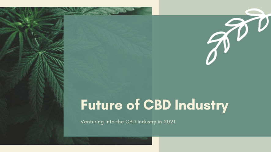 The future of cbd industry